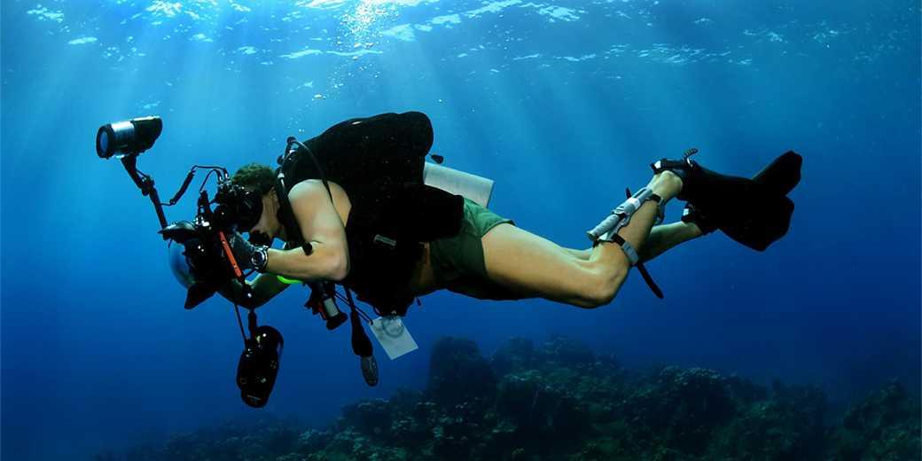 diving_pixabay