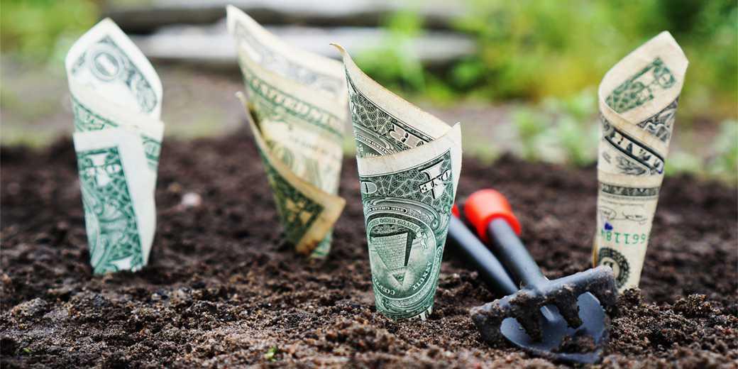 money-2_Pixabay
