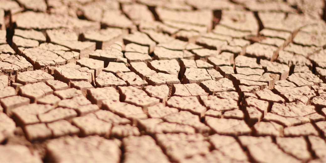 soil-pixabay
