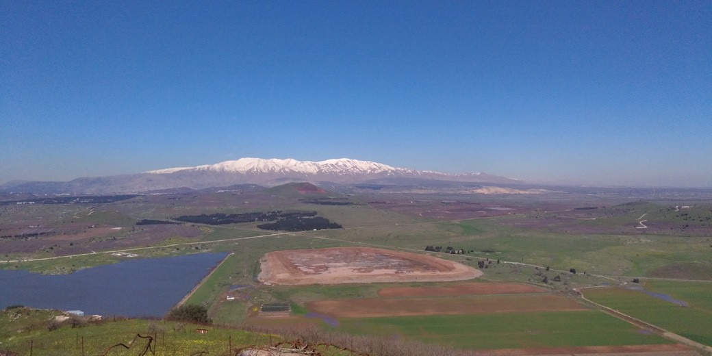 Golan heights Elena Zissu