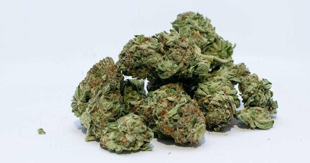 Паника при употреблении марихуаны каталоги конопли