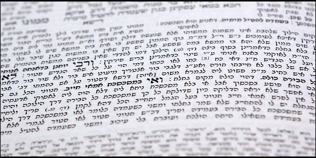 84212_Talmud_Limor_Edri