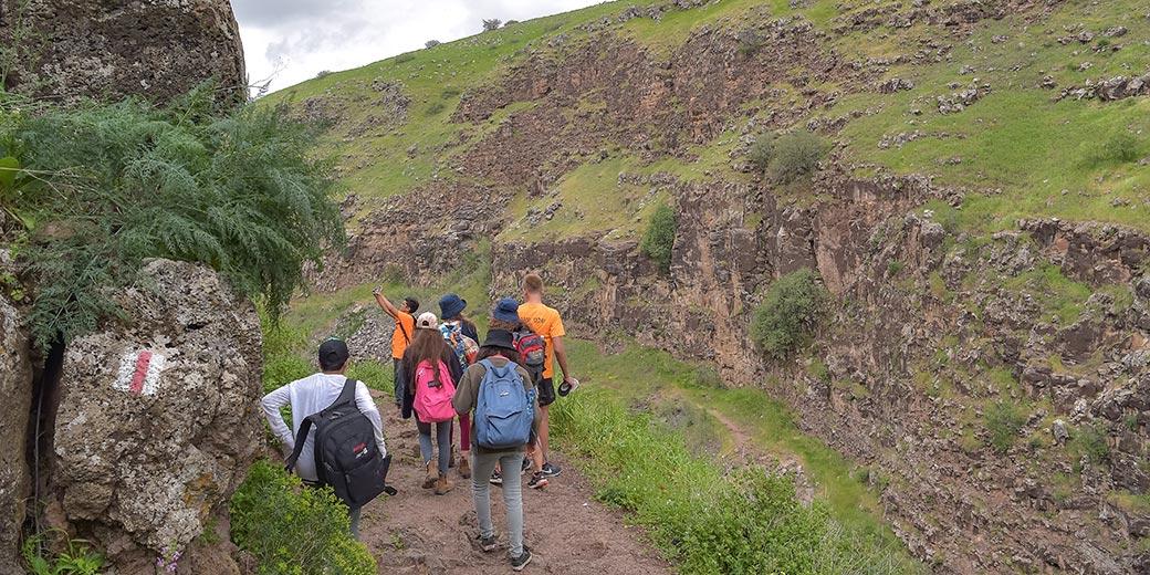 861017_nature_trip_children_school_Gil_Elyahu