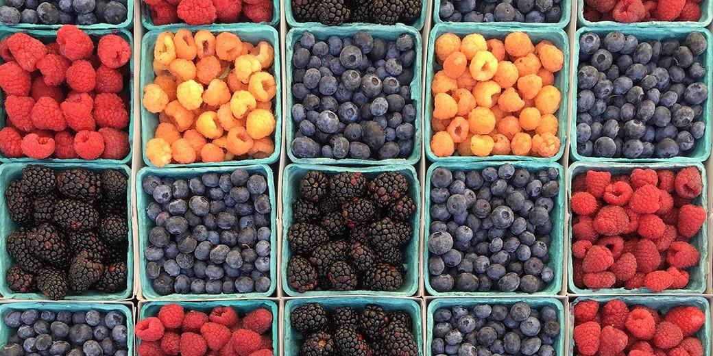 berries-pixabay