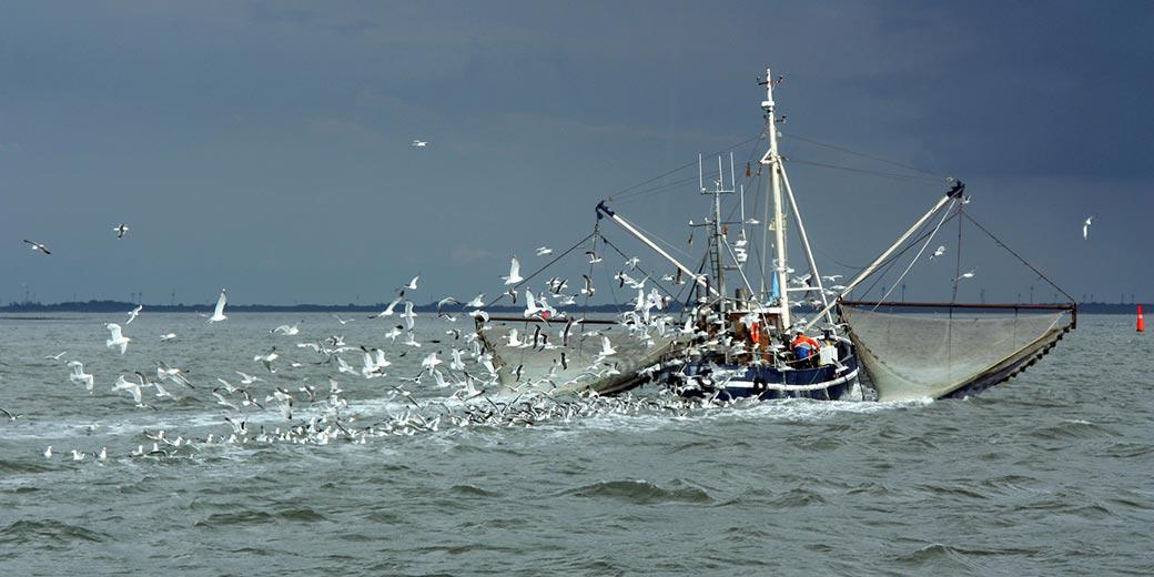 fishing_boat_1_Pixabay