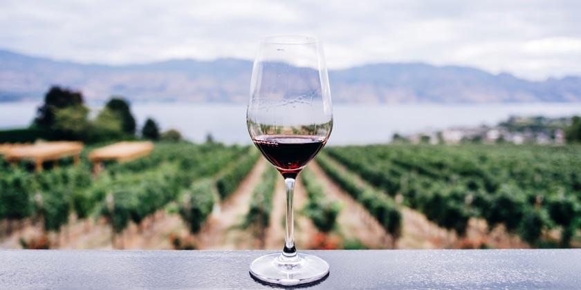 kym-ellis-wine-unsplash