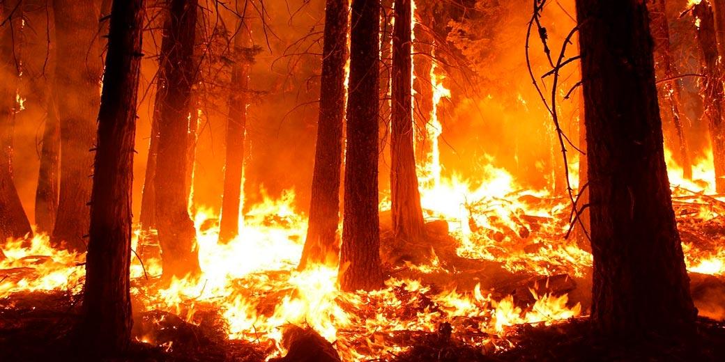 wildfire-pixabay