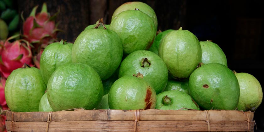 guava-pixabay