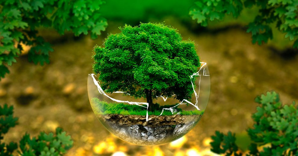 environmental-protection-pixabay