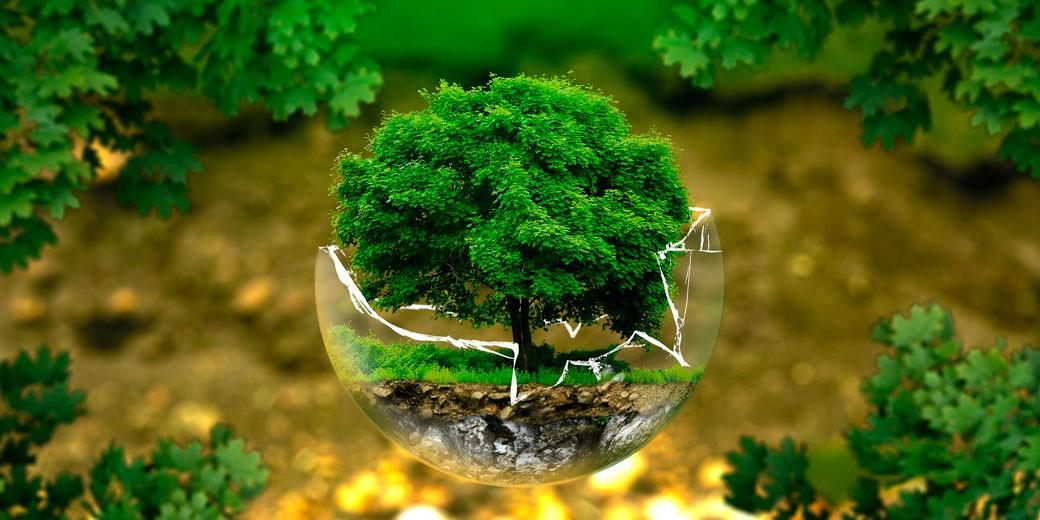 environmental-protection-pixabay