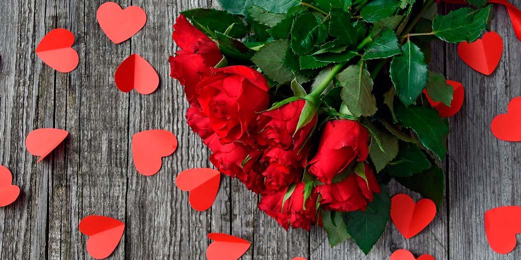 red-rose-3923288_1920
