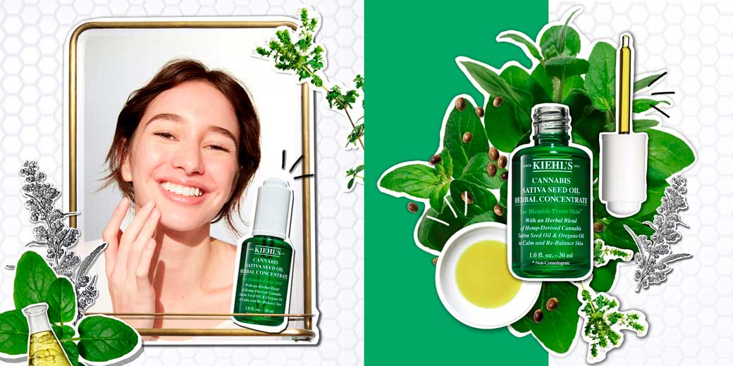 Kiehl's-Cannabis-Sativa-Seed-Oil-Herbal-Concentrate