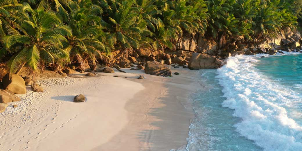 chris-beach-unsplash