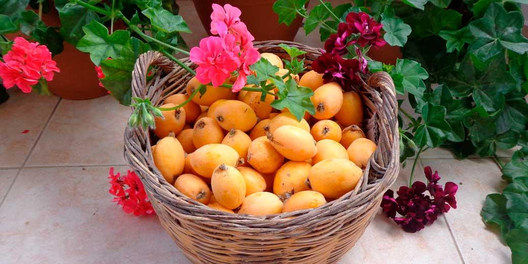fruits-pixabay