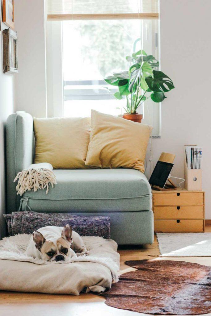 Советы, как сделать интерьер квартиры более «домашним» и уютным