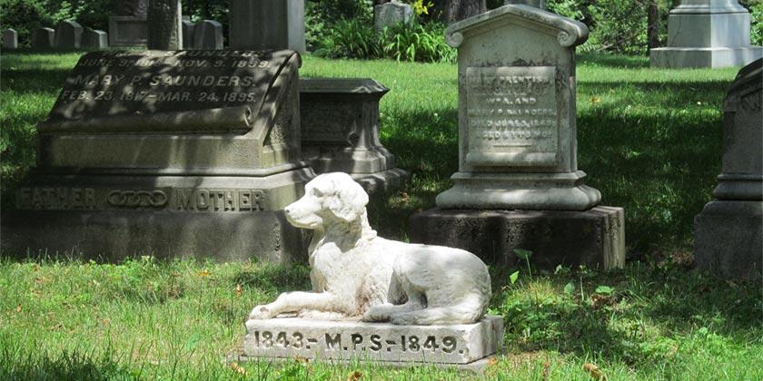 Pet_graveyard-Pixabay