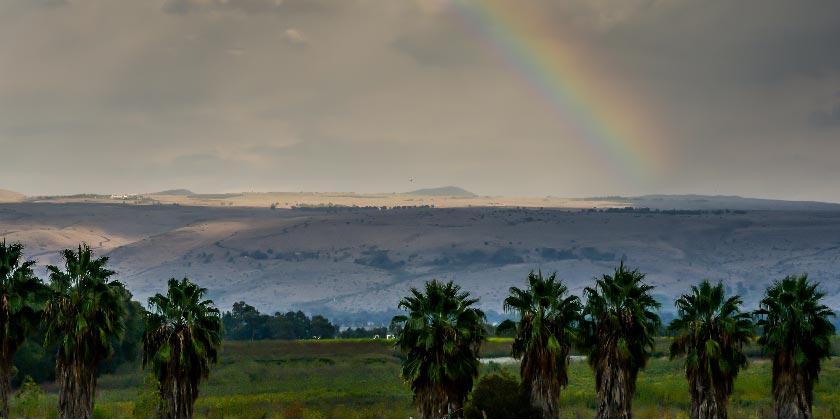 649296_Winter_Galilee_Gil_Elyahu