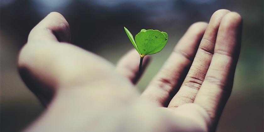 ravi-roshan-personal growth-unsplash