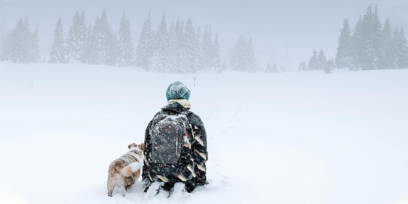catalin-sandru-snow-winter-unsplash