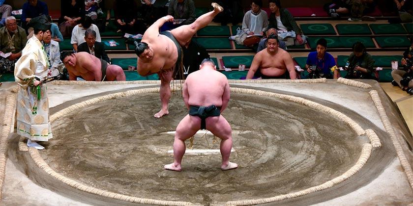 alessio-roversi-sumo-unsplash