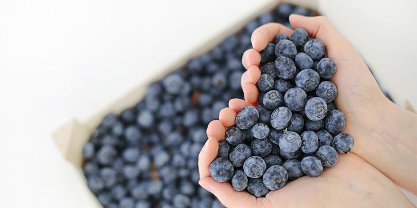 evie-fjord-blueberry-unsplash