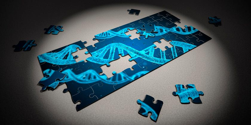 puzzle-DNA-pixabay