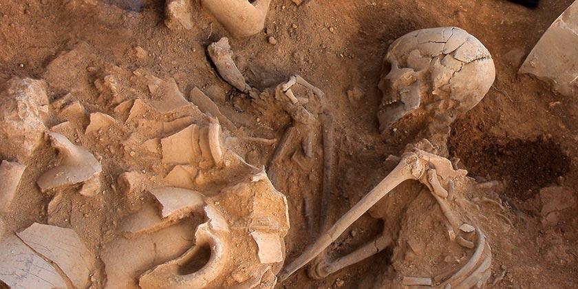 Фото: Sasha Flit/Institute of Archaeology Tel Aviv University