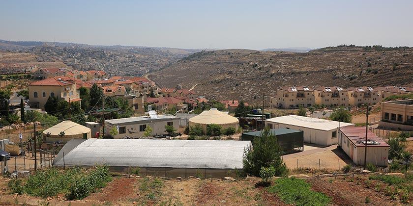 Поселение Эфрат. Фото: Emil Salman