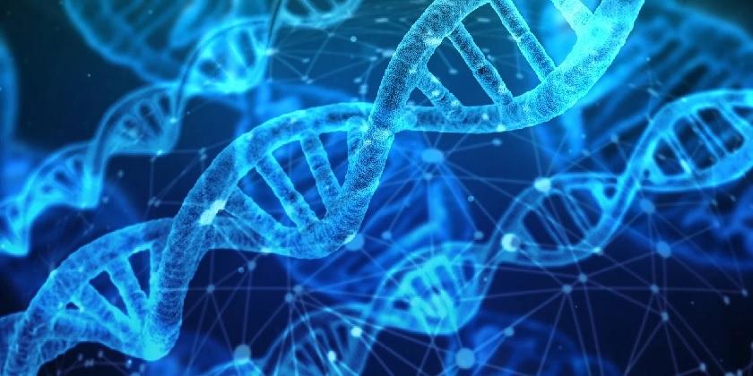 biology science Pixabay
