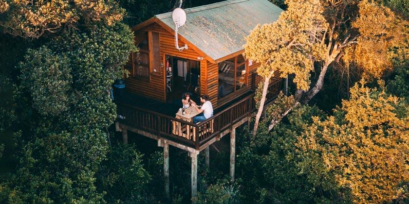 pexels-taryn-elliott-house-forest