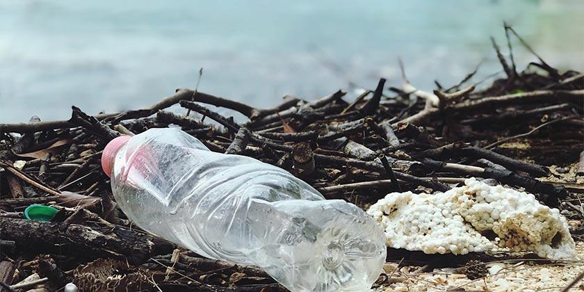 pexels-catherine-sheila-bottle-ecology